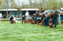 Memorial Classe De Bullyhouse Mactavish Au Régional De 2010, Le 03 Avril A Puget Sur Argent