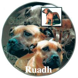 Ruadh-2-icon