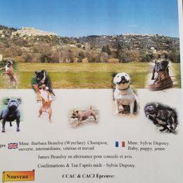 28 Mai 2017 –  Regionale d'elevage PACA – Staffordshire Bull Terrier Club de France