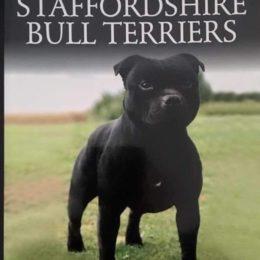 James Beaufoy's book available on Amazon